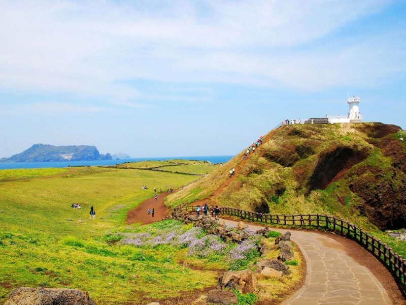 未来看好:济州岛地价暴涨,韩国房产大有可为