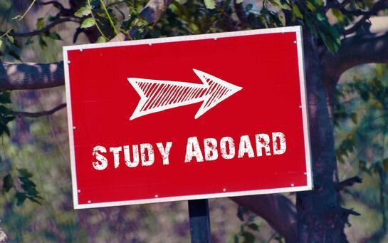 """美国大学录取""""全军覆没""""?留学规划时间点是关键!"""